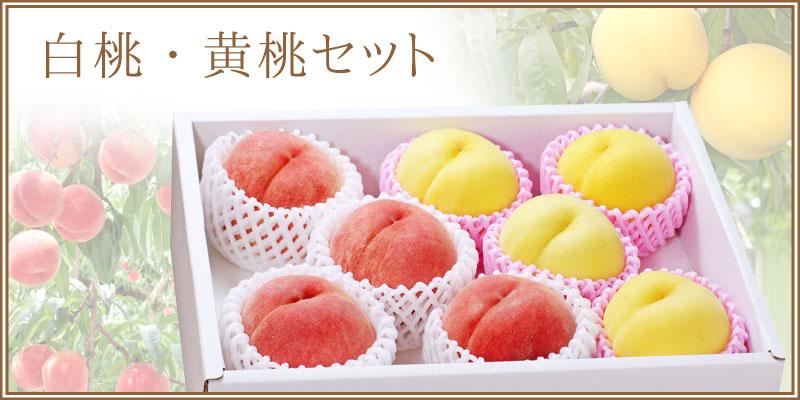 白桃・黄桃セット