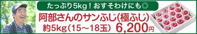 51-Gサンふじ