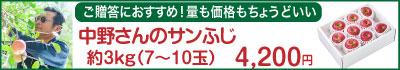 51-Iサンふじ