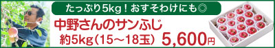 51-Jサンふじ