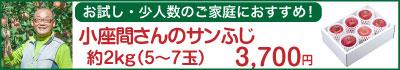 51-Kサンふじ