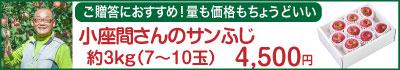 51-Lサンふじ