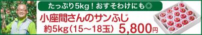 51-Mサンふじ