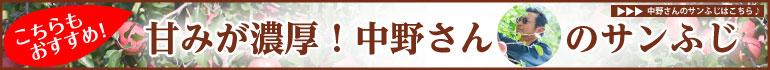 中野さんのサンふじ width=