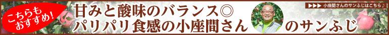 小座間さんのサンふじ width=