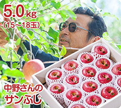 中野さんのサンふじ(51-J)