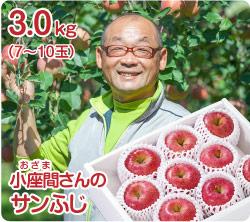 小座間さんのサンふじ(51-L)