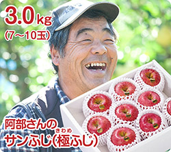 阿部さんのサンふじ(51-F)