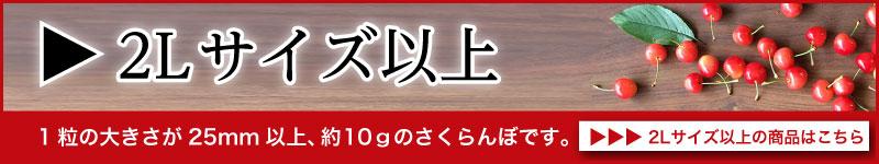 佐藤錦2Lサイズ