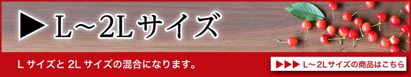 佐藤錦L〜2Lサイズ