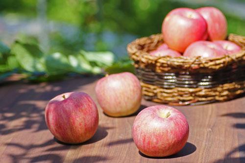 りんご通販 サンふじ通販 ふじりんご通販