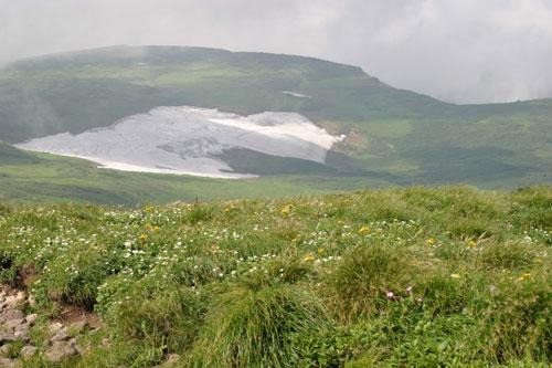 月山8合目広がる湿原、弥陀ヶ原