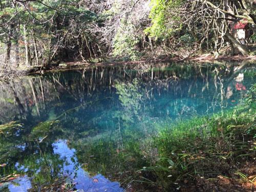 丸池さま 味の農園 牛渡川