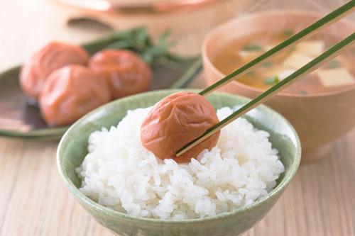 ササニシキ お米 山形米
