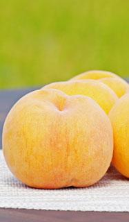 ももレシピ 桃通販 山形の桃