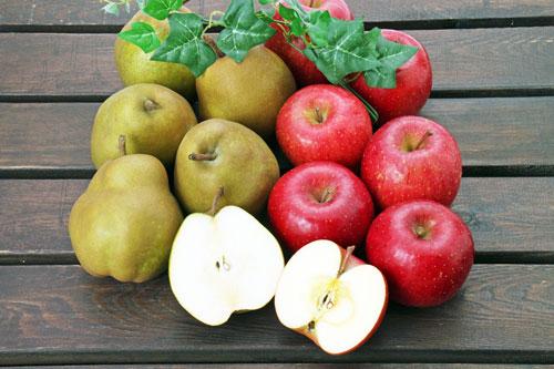 りんご通販 サンふじ通販 こうとく通販