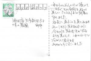 お米定期宅配 さくらんぼ 佐藤錦