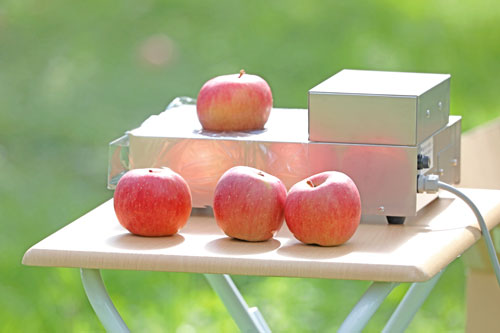 蜜入りりんご こうとく りんご通販