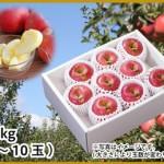 リンゴ レシピ 山形りんご