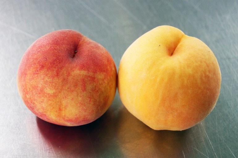 もも 黄桃 白桃