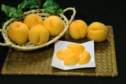 黄桃 桃通販 もも通販