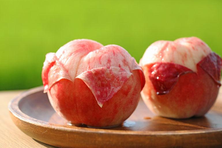 桃の栽培 桃通販 山形の桃