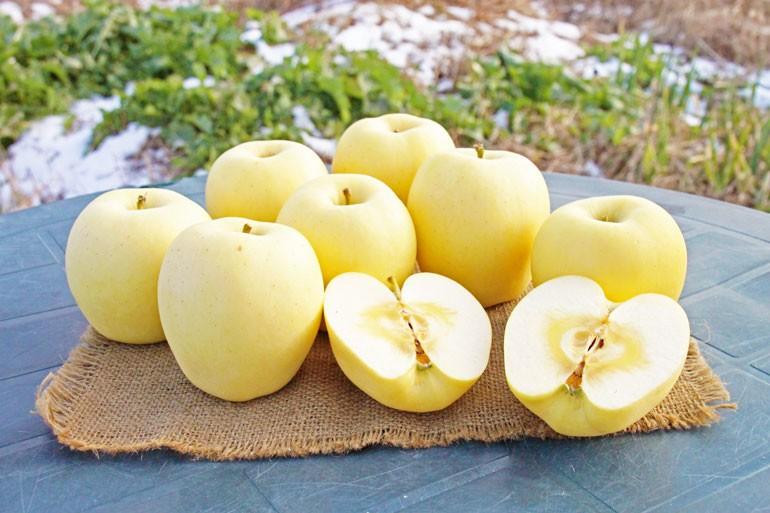 蜜入りリンゴ 蜜入りこうとく リンゴ通販