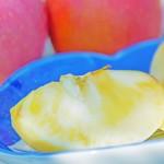 蜜入りこうとく 蜜入りりんご 蜜入りりんご通販