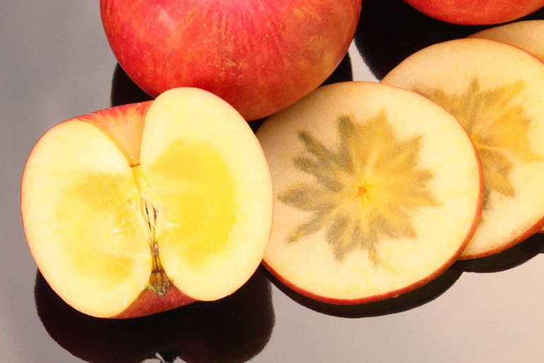 こうとく 高徳 蜜入りりんご