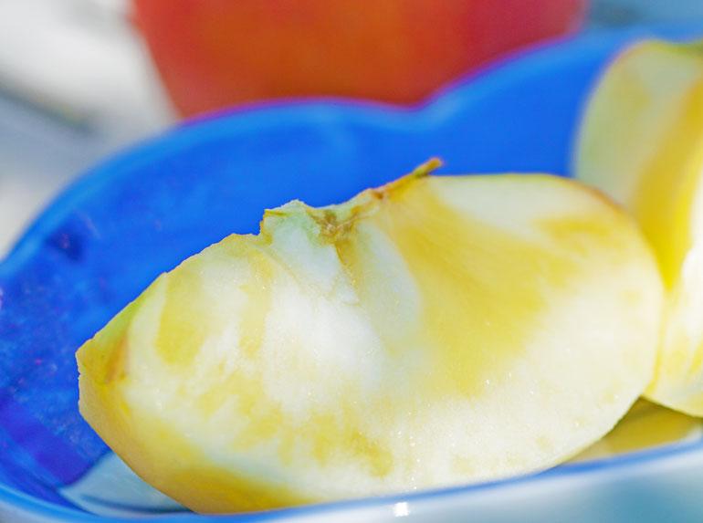 太陽りんご りんご通販 山形りんご通販