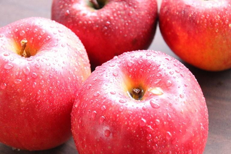 りんご通販 りんご保存方法 蜜入りりんご通販