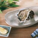 岩牡蠣 岩牡蠣通販 天然岩牡蠣