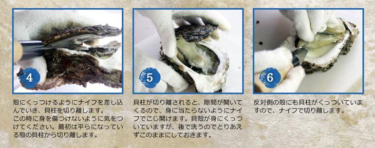 岩牡蠣通販 岩牡蠣 天然岩牡蠣