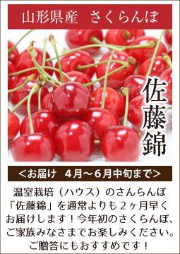 さくらんぼ(4月~6月中旬まで)