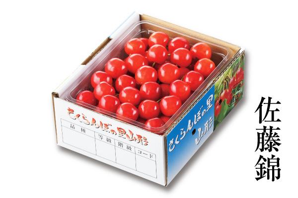 温室さくらんぼ佐藤錦 バラパック 約500g L~2Lサイズ