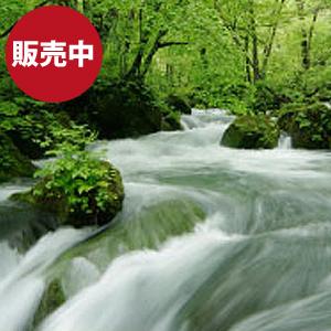 天然水(鳥海山氷河水)