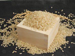玄米 玄米がゆ 玄米粥